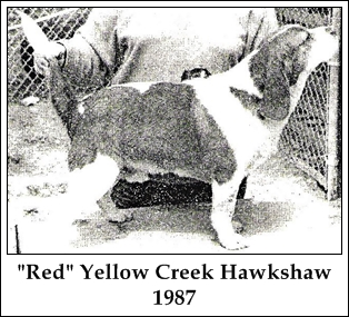 John Toy & Yellow Creek Hawkshaw