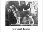 Fish Creek Farmer