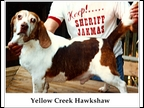 Yellow Creek Hawkshaw 1993