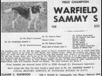 Warfield Sammy S