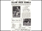 Yellow Creek Kennels