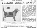 Yellow Creek Banjo